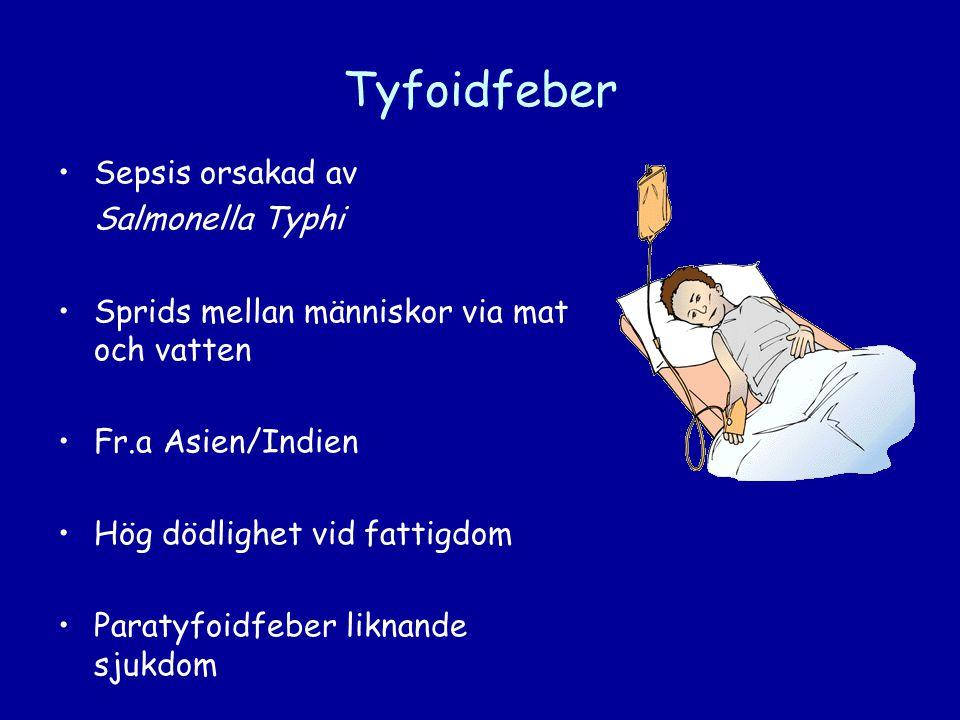 Tyfoidfeber •Sepsis orsakad av Salmonella Typhi •Sprids mellan människor via mat och vatten •Fr.a Asien/Indien •Hög dödlighet vid fattigdom •Paratyfoi