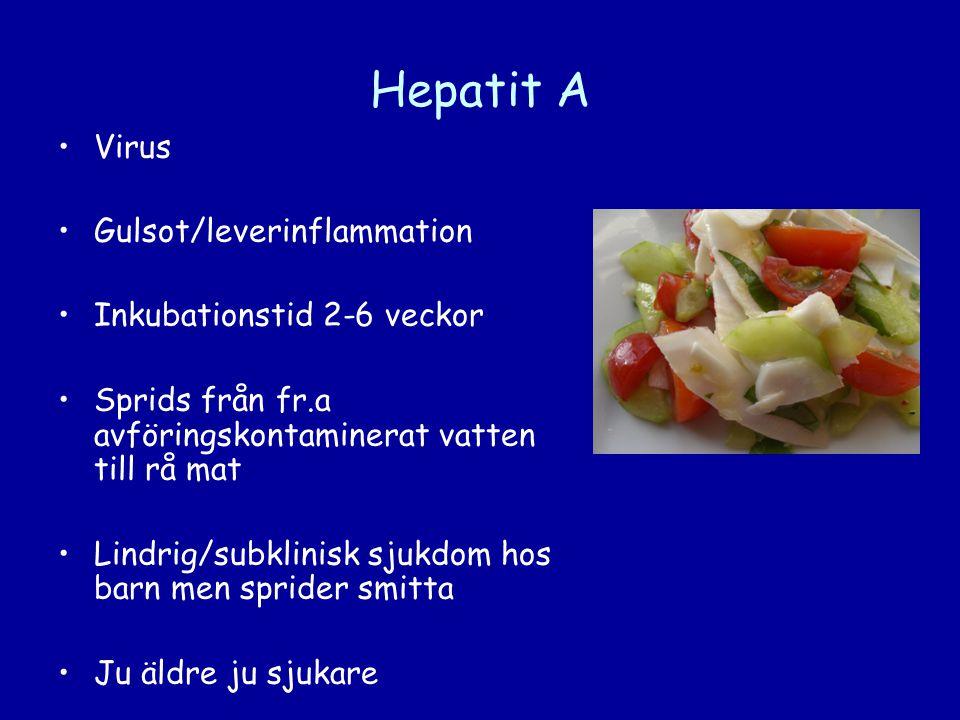 Hepatit A •Virus •Gulsot/leverinflammation •Inkubationstid 2-6 veckor •Sprids från fr.a avföringskontaminerat vatten till rå mat •Lindrig/subklinisk s