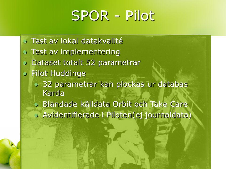  Test av lokal datakvalité  Test av implementering  Dataset totalt 52 parametrar  Pilot Huddinge  32 parametrar kan plockas ur databas Karda  Blandade källdata Orbit och Take Care  Avidentifierade i Piloten(ej journaldata) SPOR - Pilot