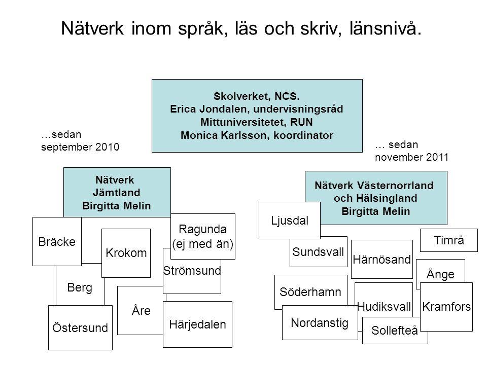 Nätverk inom språk, läs och skriv, länsnivå. Skolverket, NCS.
