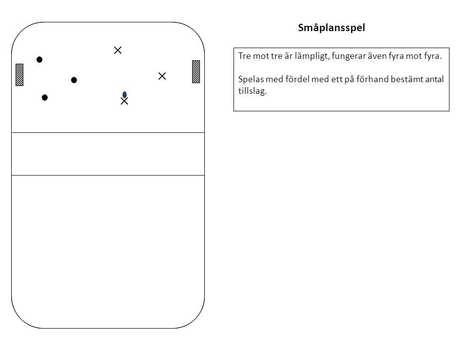 Småplansspel Tre mot tre är lämpligt, fungerar även fyra mot fyra. Spelas med fördel med ett på förhand bestämt antal tillslag.