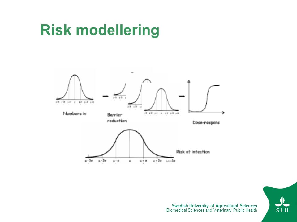 Swedish University of Agricultural Sciences Biomedical Sciences and Veterinary Public Health Risk modellering