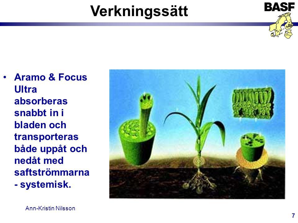 Ann-Kristin Nilsson 8 Verkningssätt •Tillväxten avstannar inom 8 timmar.