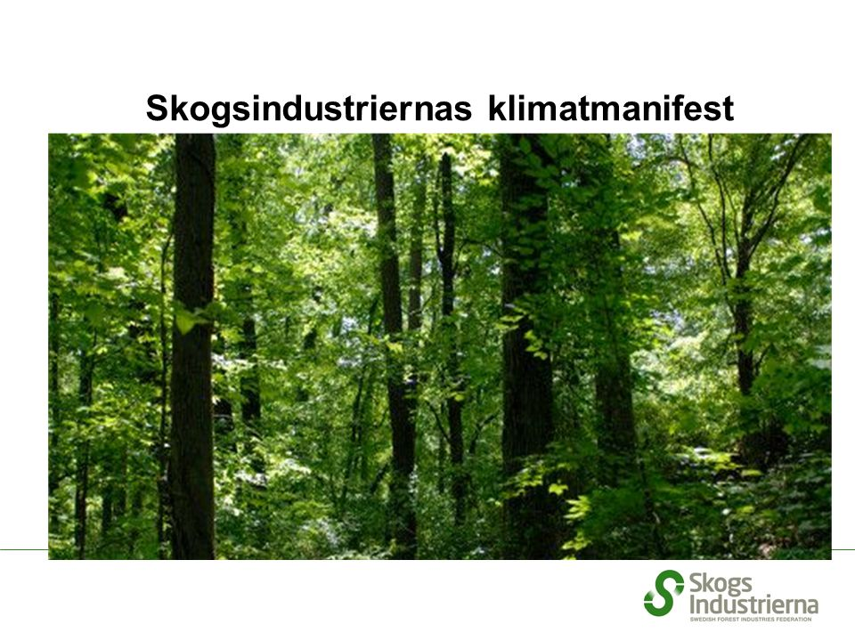 1 2 3 4 5 The Swedish forest already absorbs around 110 million tonnes of carbon dioxide annually.
