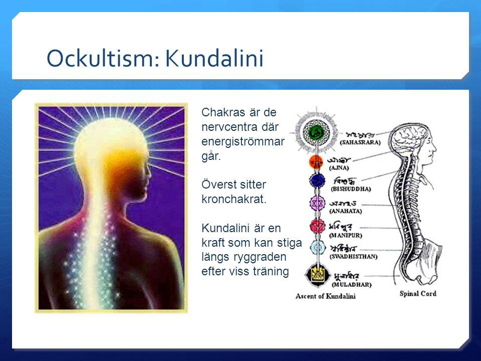 Ockultism: Kundalini Chakras är de nervcentra där energiströmmar går. Överst sitter kronchakrat. Kundalini är en kraft som kan stiga längs ryggraden e
