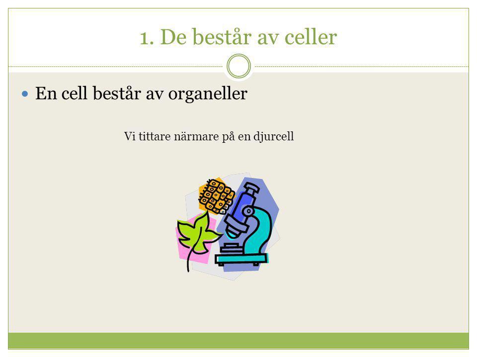 1. De består av celler  En cell består av organeller Vi tittare närmare på en djurcell