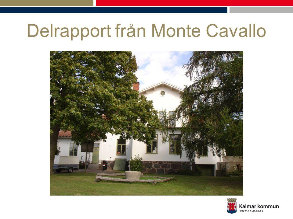Delrapport från Monte Cavallo