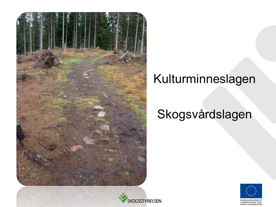 Kulturminneslagen Skogsvårdslagen