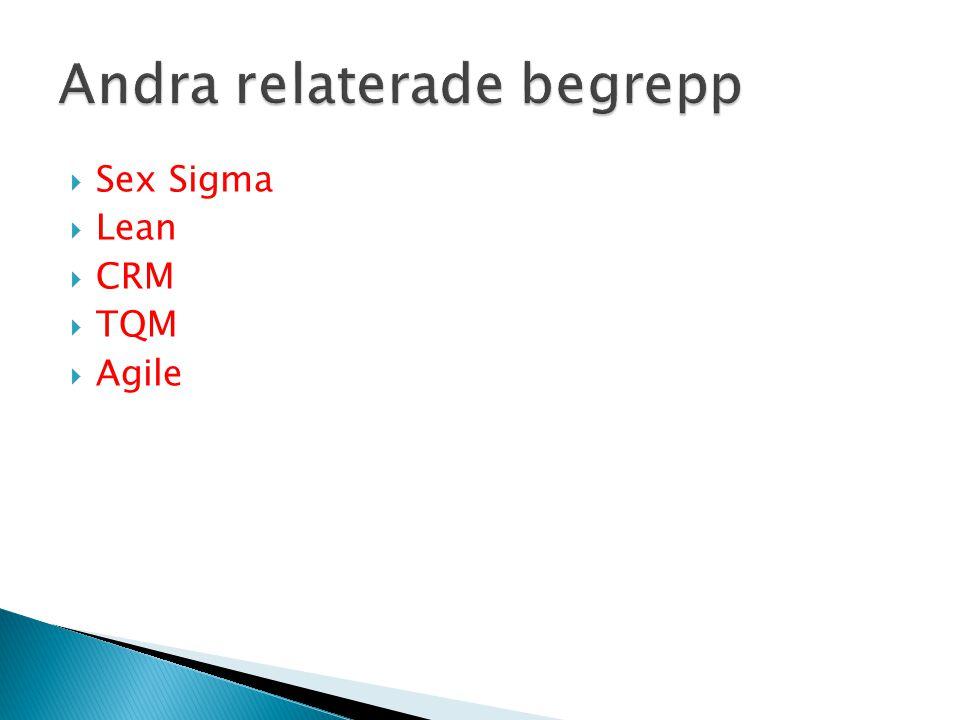  Sex Sigma  Lean  CRM  TQM  Agile