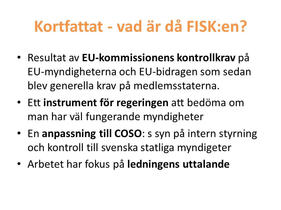 Kortfattat - vad är då FISK:en? • Resultat av EU-kommissionens kontrollkrav på EU-myndigheterna och EU-bidragen som sedan blev generella krav på medle