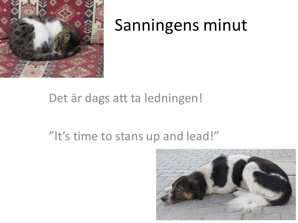 Sanningens minut Det är dags att ta ledningen! It's time to stans up and lead!