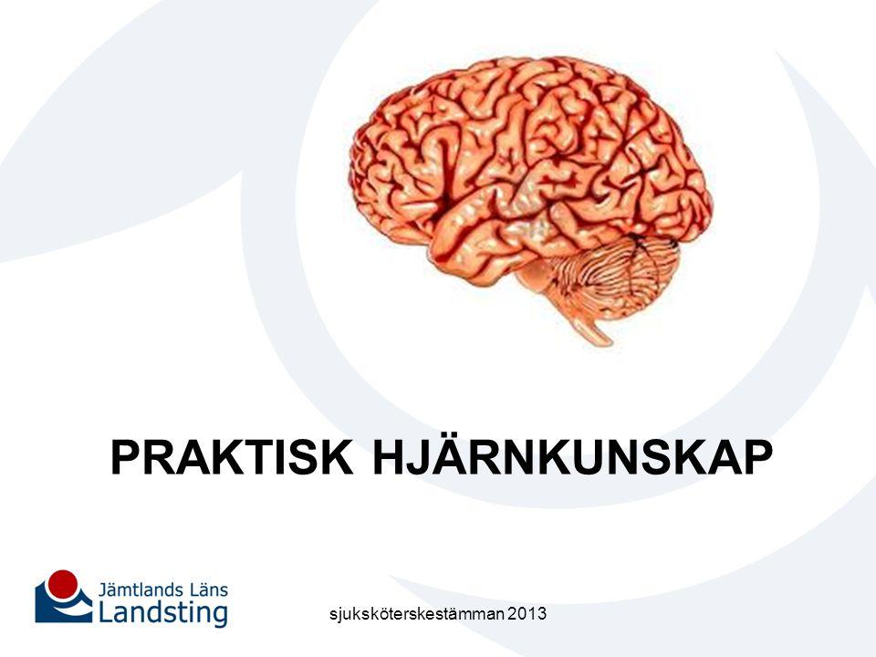 PRAKTISK HJÄRNKUNSKAP sjuksköterskestämman 2013