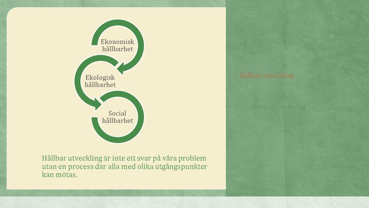 Hållbar utveckling är inte ett svar på våra problem utan en process där alla med olika utgångspunkter kan mötas. Ekonomisk hållbarhet Ekologisk hållba