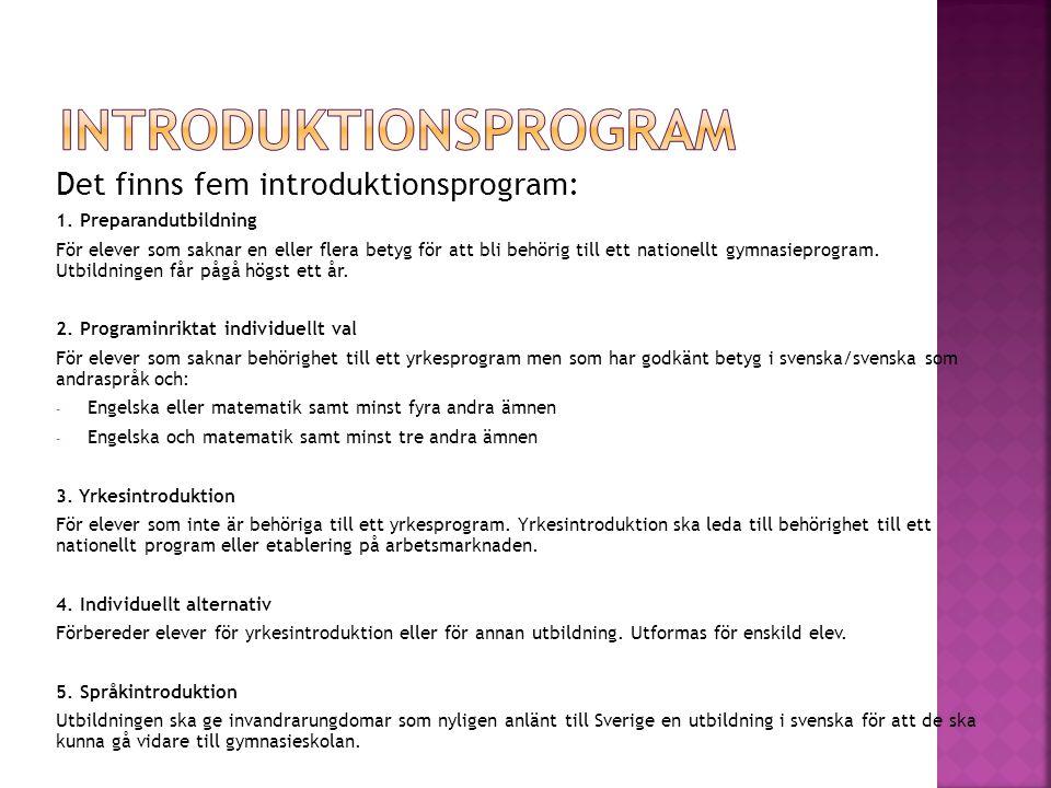 Det finns fem introduktionsprogram: 1.