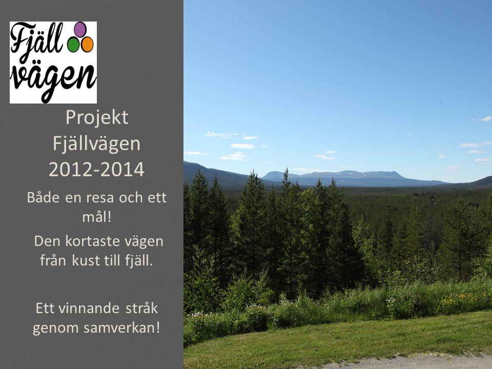 Projekt Fjällvägen 2012-2014 Både en resa och ett mål.