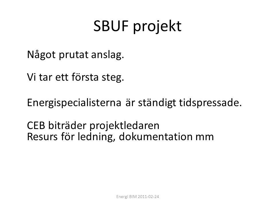 SBUF projekt Något prutat anslag. Vi tar ett första steg. Energispecialisterna är ständigt tidspressade. CEB biträder projektledaren Resurs för lednin