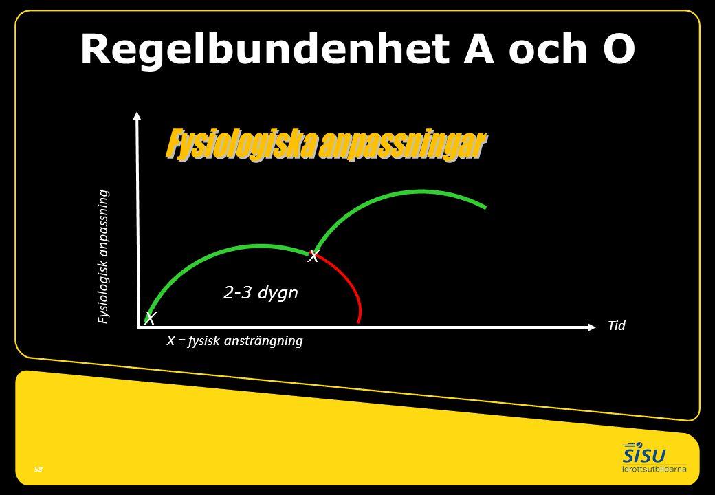Regelbundenhet A och O X = fysisk ansträngning Tid Fysiologisk anpassning 58 X 2-3 dygn X