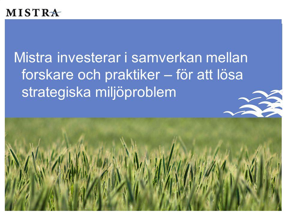 Mistra investerar i samverkan mellan forskare och praktiker – för att lösa strategiska miljöproblem