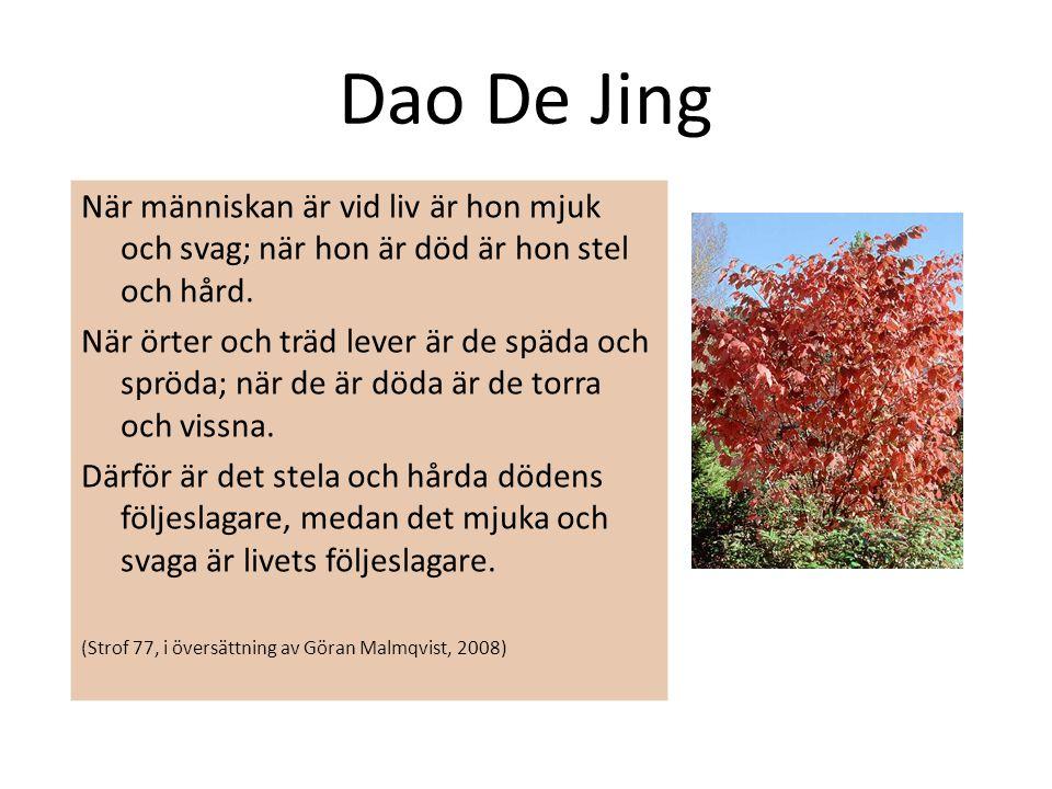 Dao De Jing När människan är vid liv är hon mjuk och svag; när hon är död är hon stel och hård. När örter och träd lever är de späda och spröda; när d