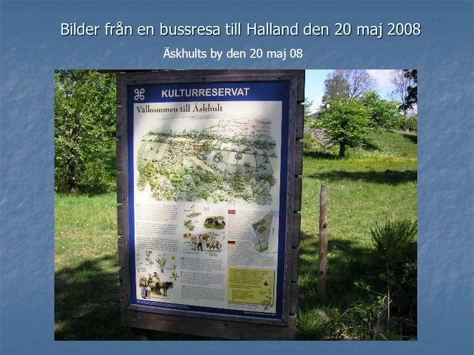 Bilder från en bussresa till Halland den 20 maj 2008 Äskhults by den 20 maj 08