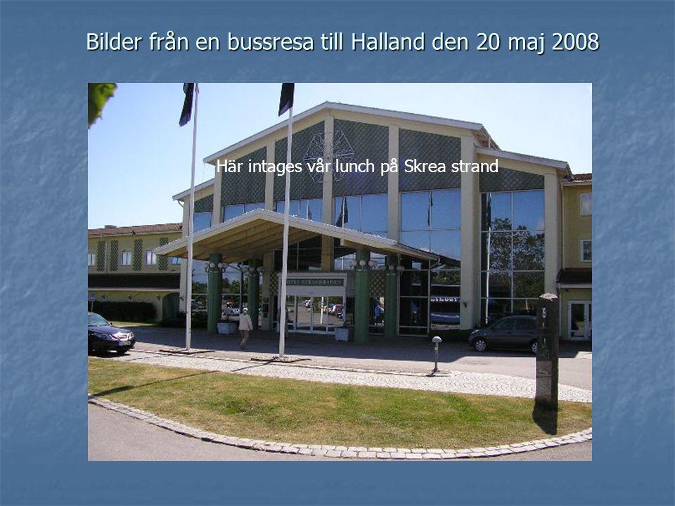 Bilder från en bussresa till Halland den 20 maj 2008 Här intages vår lunch på Skrea strand