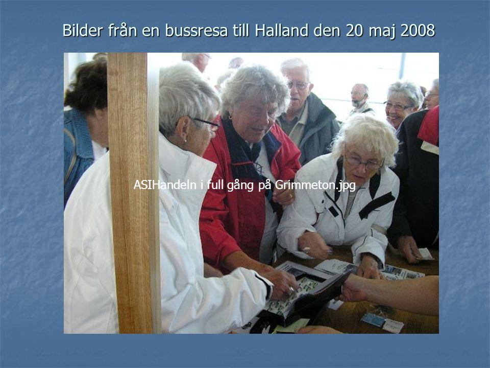 Bilder från en bussresa till Halland den 20 maj 2008 ASIHandeln i full gång på Grimmeton.jpg