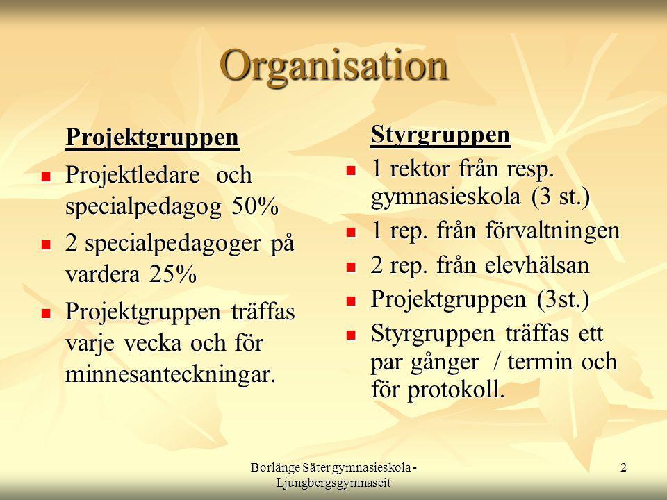 Borlänge Säter gymnasieskola - Ljungbergsgymnaseit 2 Organisation Projektgruppen  Projektledare och specialpedagog 50%  2 specialpedagoger på vardera 25%  Projektgruppen träffas varje vecka och för minnesanteckningar.