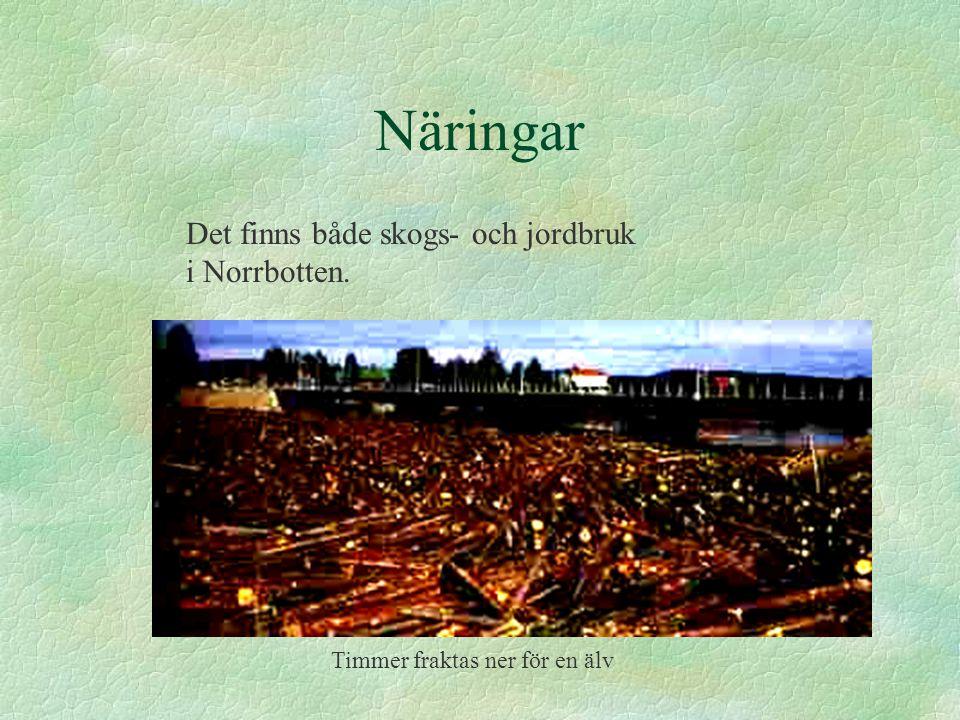 Näringar Det finns både skogs- och jordbruk i Norrbotten. Timmer fraktas ner för en älv