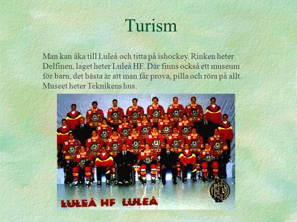 Turism Man kan åka till Luleå och titta på ishockey. Rinken heter Delfinen, laget heter Luleå HF. Där finns också ett museum för barn, det bästa är at