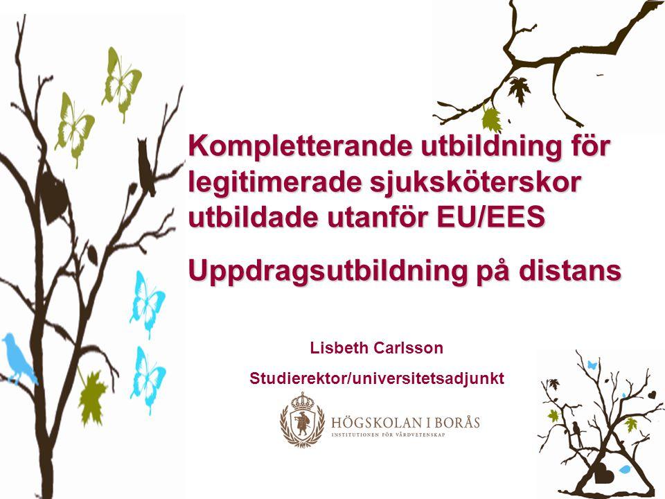 Kompletterande utbildning för legitimerade sjuksköterskor utbildade utanför EU/EES Uppdragsutbildning på distans Lisbeth Carlsson Studierektor/univers