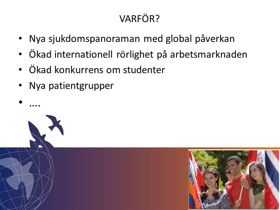 • Nya sjukdomspanoraman med global påverkan • Ökad internationell rörlighet på arbetsmarknaden • Ökad konkurrens om studenter • Nya patientgrupper • ….