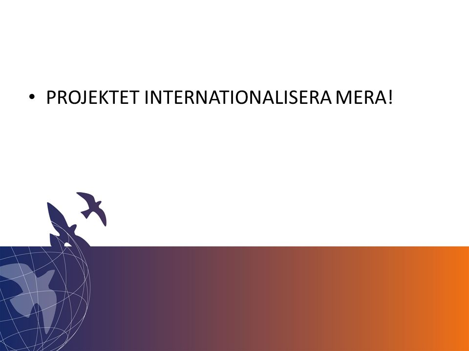 • PROJEKTET INTERNATIONALISERA MERA!