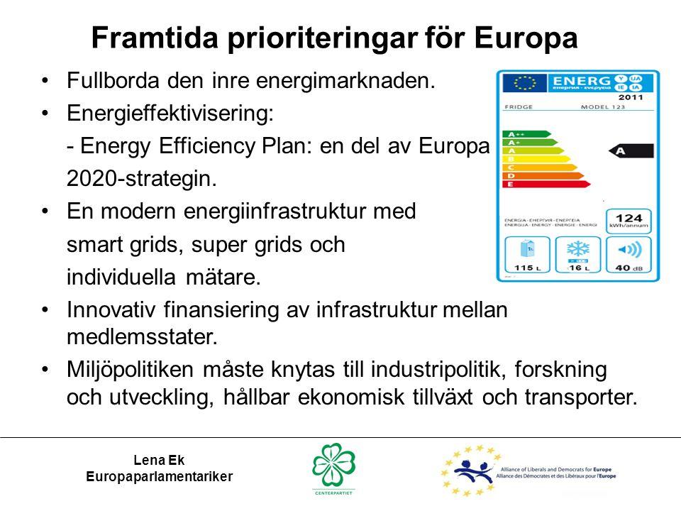 Lena Ek Europaparlamentariker •Fullborda den inre energimarknaden. •Energieffektivisering: - Energy Efficiency Plan: en del av Europa 2020-strategin.