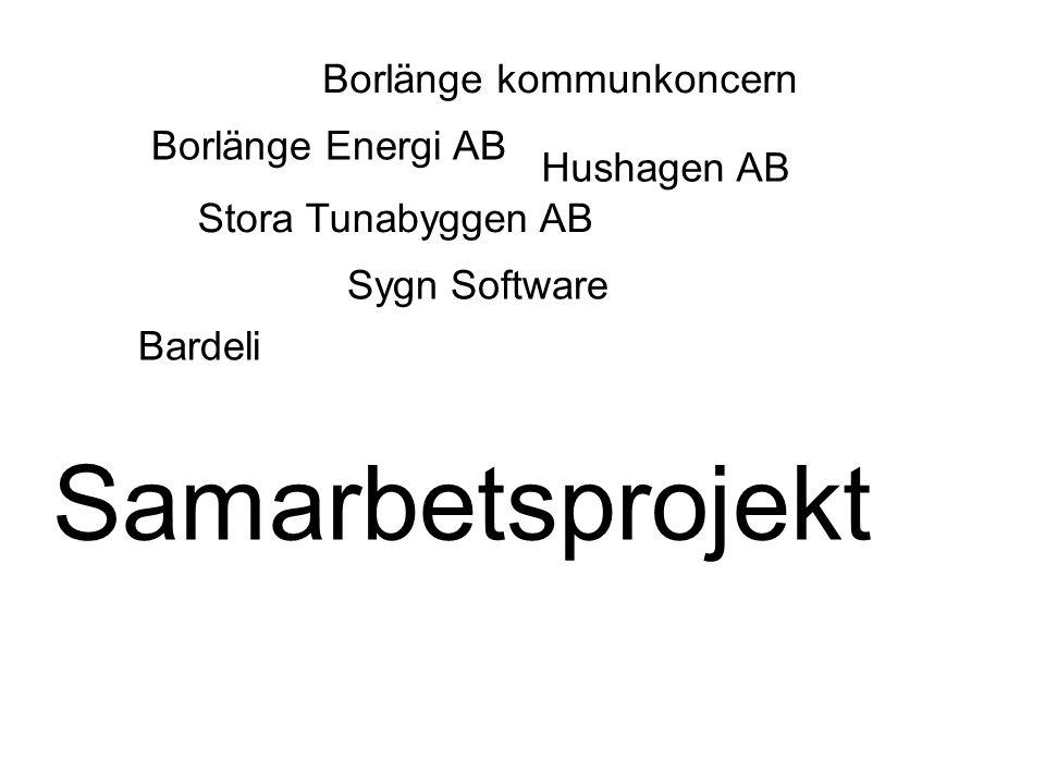 Borlänge kommunkoncern Sygn Software Borlänge Energi AB Bardeli Stora Tunabyggen AB Samarbetsprojekt Hushagen AB