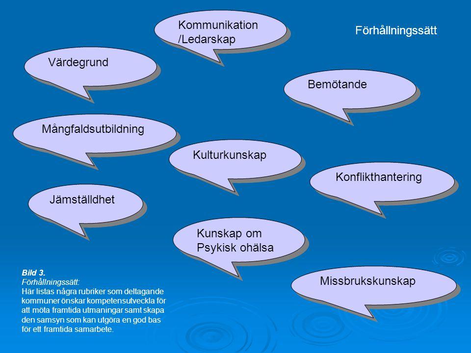 Bemötande Värdegrund Konflikthantering Missbrukskunskap Kunskap om Psykisk ohälsa Kunskap om Psykisk ohälsa Kommunikation /Ledarskap Kulturkunskap Mångfaldsutbildning Jämställdhet Förhållningssätt Bild 3.