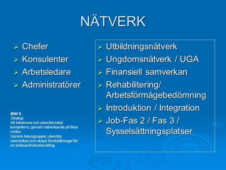 NÄTVERK  Chefer  Konsulenter  Arbetsledare  Administratörer  Utbildningsnätverk  Ungdomsnätverk / UGA  Finansiell samverkan  Rehabilitering/ Arbetsförmågebedömning  Introduktion / Integration  Job-Fas 2 / Fas 3 / Sysselsättningsplatser Bild 5.
