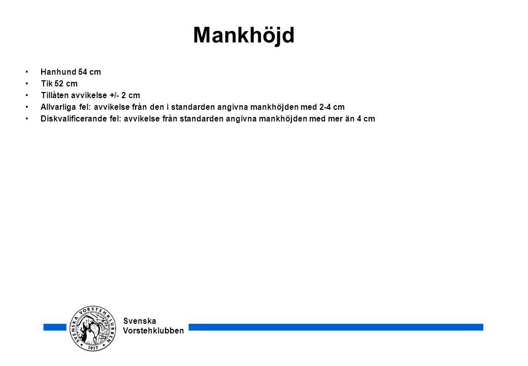 Svenska Vorstehklubben Mankhöjd •Hanhund 54 cm •Tik 52 cm •Tillåten avvikelse +/- 2 cm •Allvarliga fel: avvikelse från den i standarden angivna mankhö