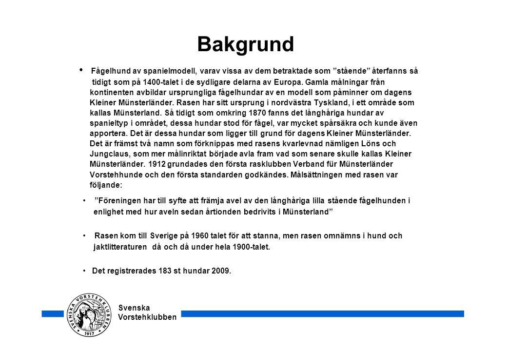"""Svenska Vorstehklubben Bakgrund • Fågelhund av spanielmodell, varav vissa av dem betraktade som """"stående"""" återfanns så tidigt som på 1400-talet i de s"""