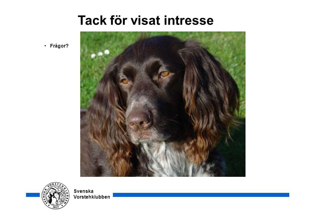 Svenska Vorstehklubben Tack för visat intresse • Frågor?