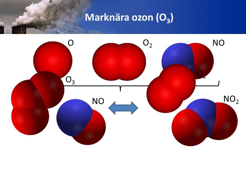 O O2O2 NO O3O3 NO 2 O2O2 Marknära ozon (O 3 )