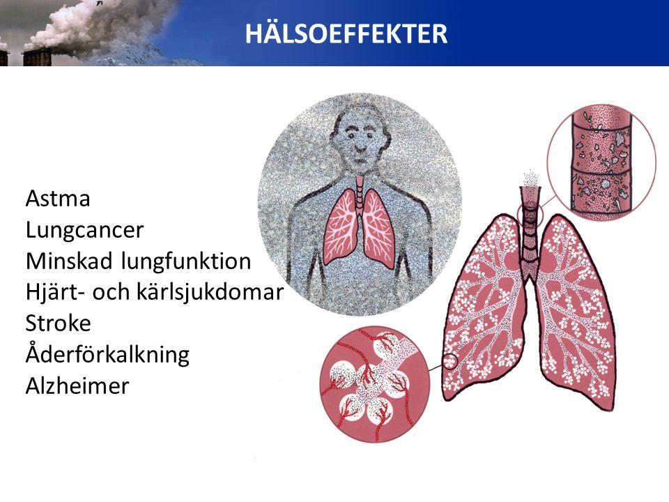 Astma Lungcancer Minskad lungfunktion Hjärt- och kärlsjukdomar Stroke Åderförkalkning Alzheimer