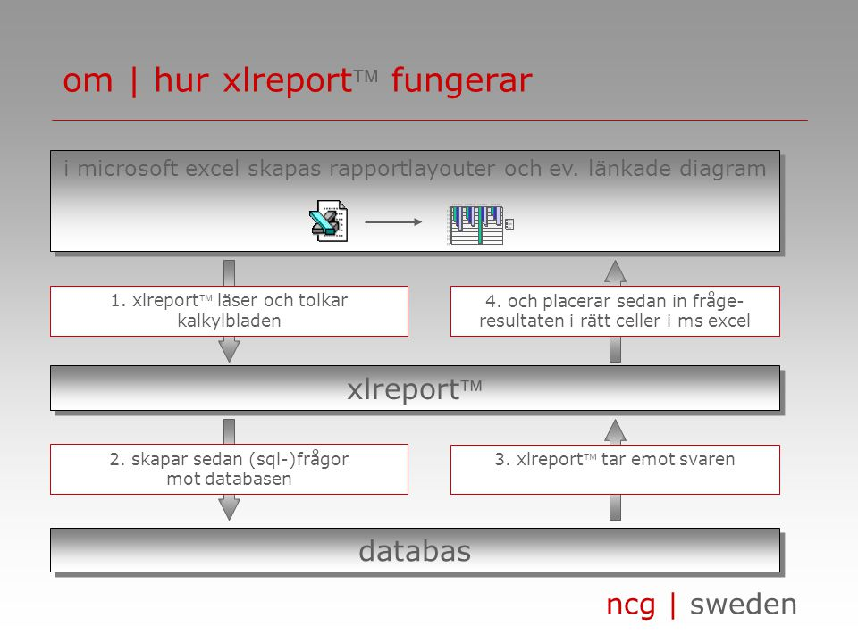 ncg | sweden om | hur xlreport fungerar i microsoft excel skapas rapportlayouter och ev.