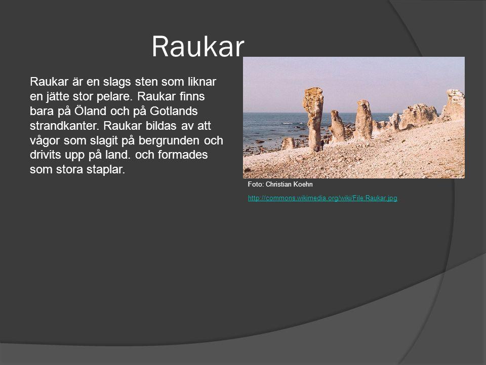 Raukar Raukar är en slags sten som liknar en jätte stor pelare. Raukar finns bara på Öland och på Gotlands strandkanter. Raukar bildas av att vågor so