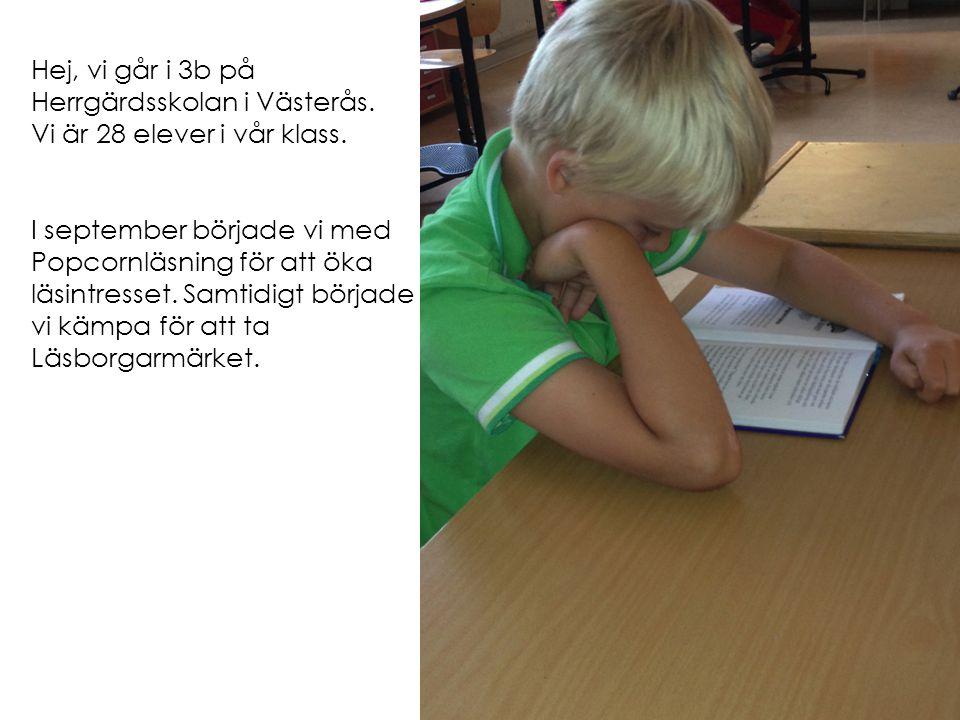 Hej, vi går i 3b på Herrgärdsskolan i Västerås. Vi är 28 elever i vår klass. I september började vi med Popcornläsning för att öka läsintresset. Samti