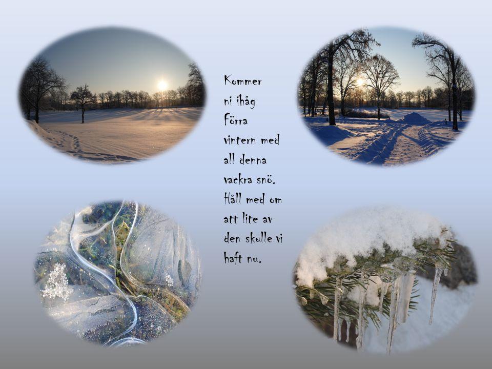 Kommer ni ihåg Förra vintern med all denna vackra snö.