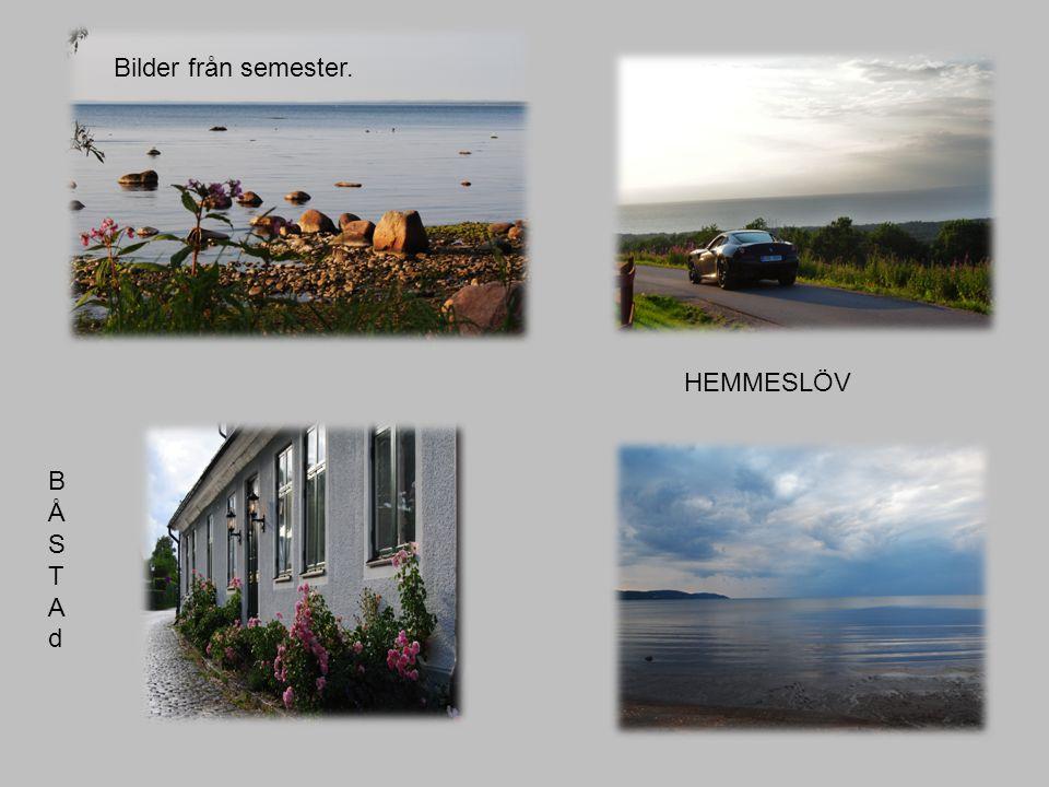 BÅSTAdBÅSTAd HEMMESLÖV Bilder från semester.