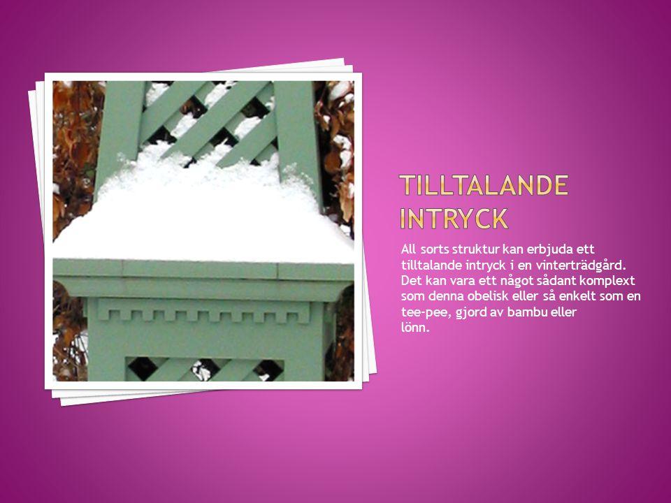 All sorts struktur kan erbjuda ett tilltalande intryck i en vinterträdgård. Det kan vara ett något sådant komplext som denna obelisk eller så enkelt s