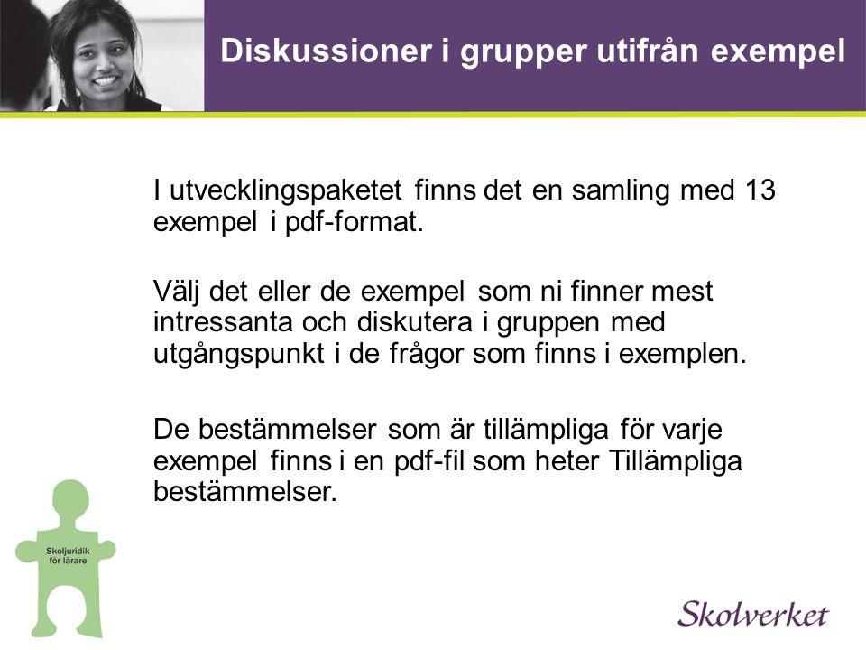 Diskussioner i grupper utifrån exempel I utvecklingspaketet finns det en samling med 13 exempel i pdf-format.