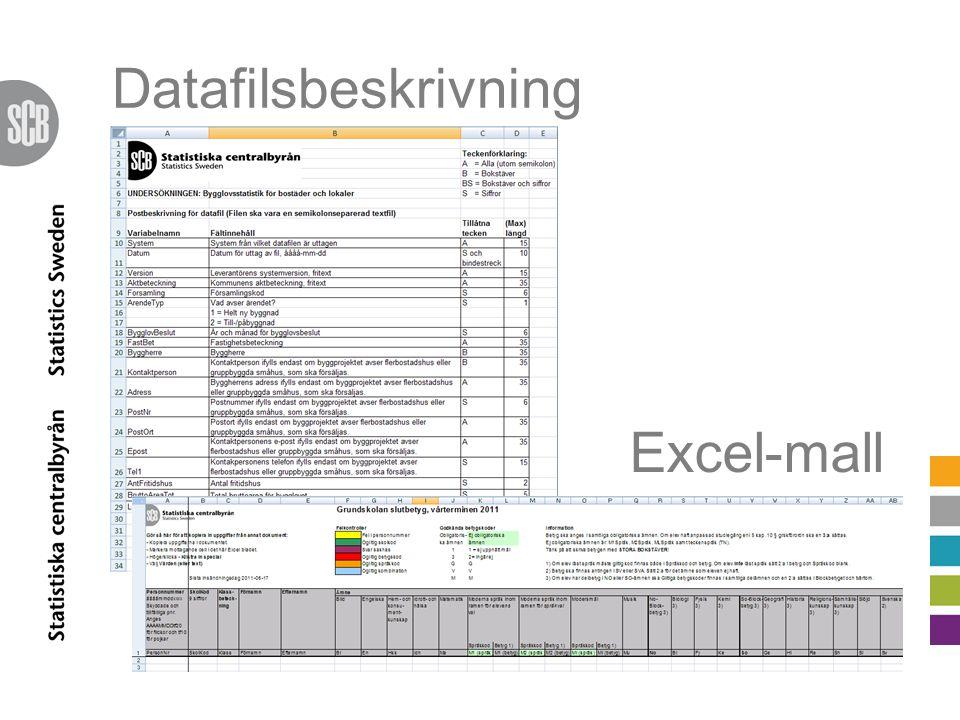 Datafilsbeskrivning Excel-mall