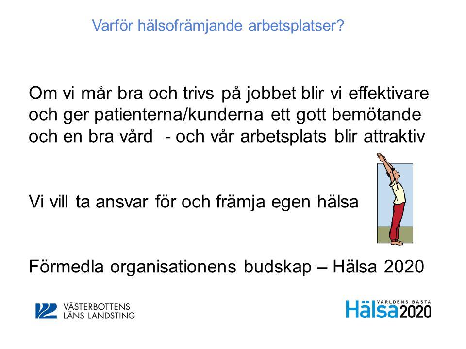 Kan laddas ner gratis från http://www.vinnova.se/Publikationer/Produ kter/Halsoframjande-ledarskap-och- medarbetarskap-/
